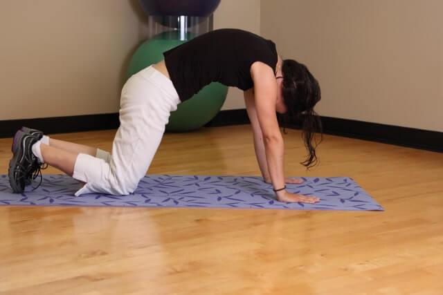 Übung Kuh und Katze bei Rückenschmerzen